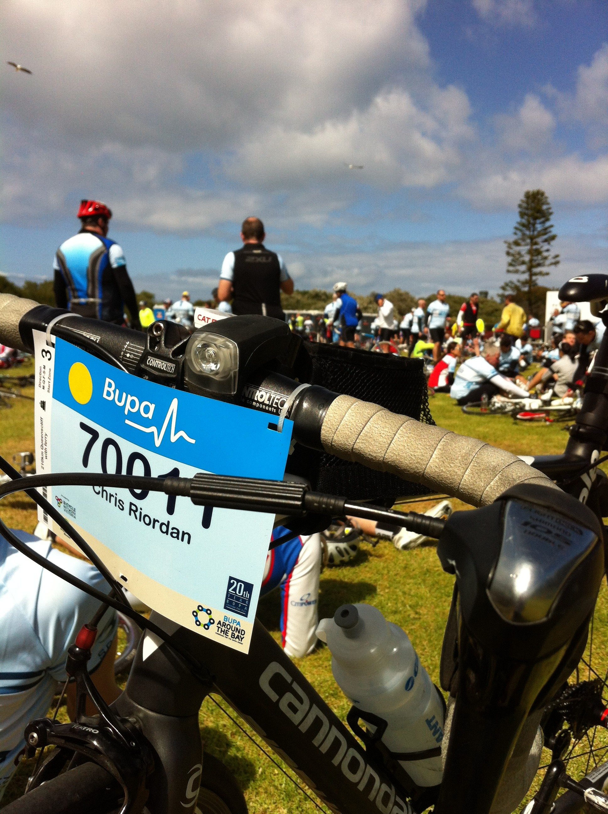 Around the Bay 2015 –  The plan